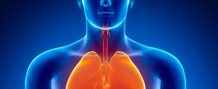 Лечение болезней органов дыхания в санатории Лесные озера