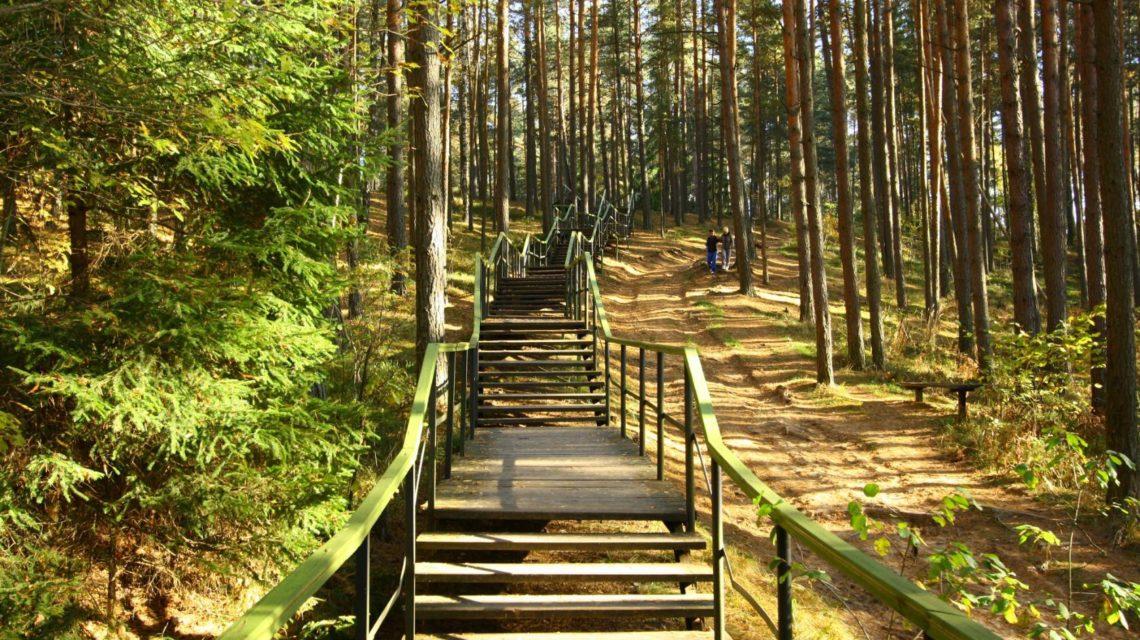 лесные маршруты близ санатория Лесные озера