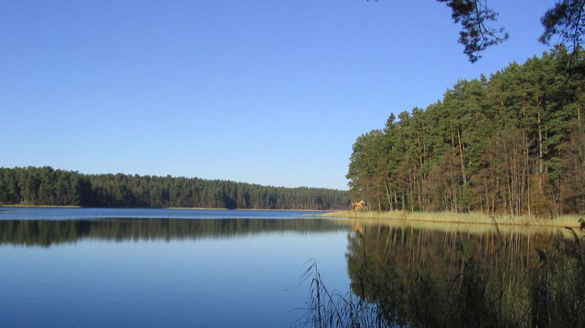 Окресности снатория Лесные озера