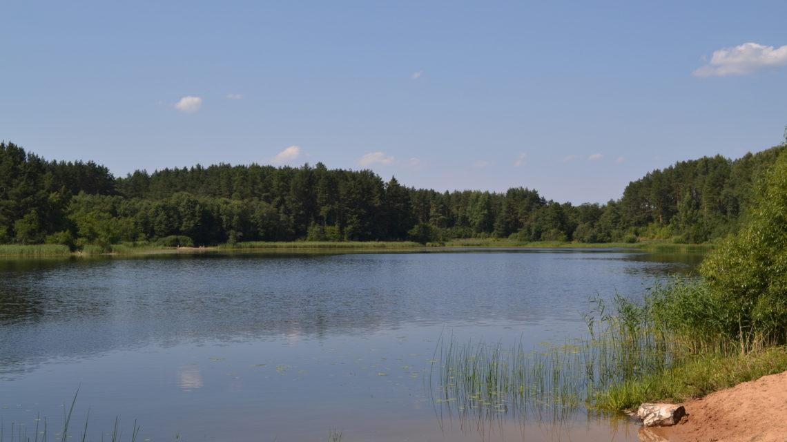 Береговые виды санаторий Лесные озера
