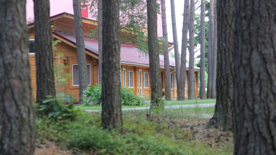 корпус в окружении леса. санаторий Лесные озера