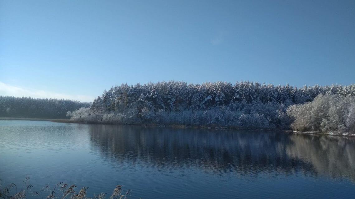 веса в Лесных озерах